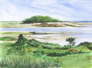 Vaughns Island